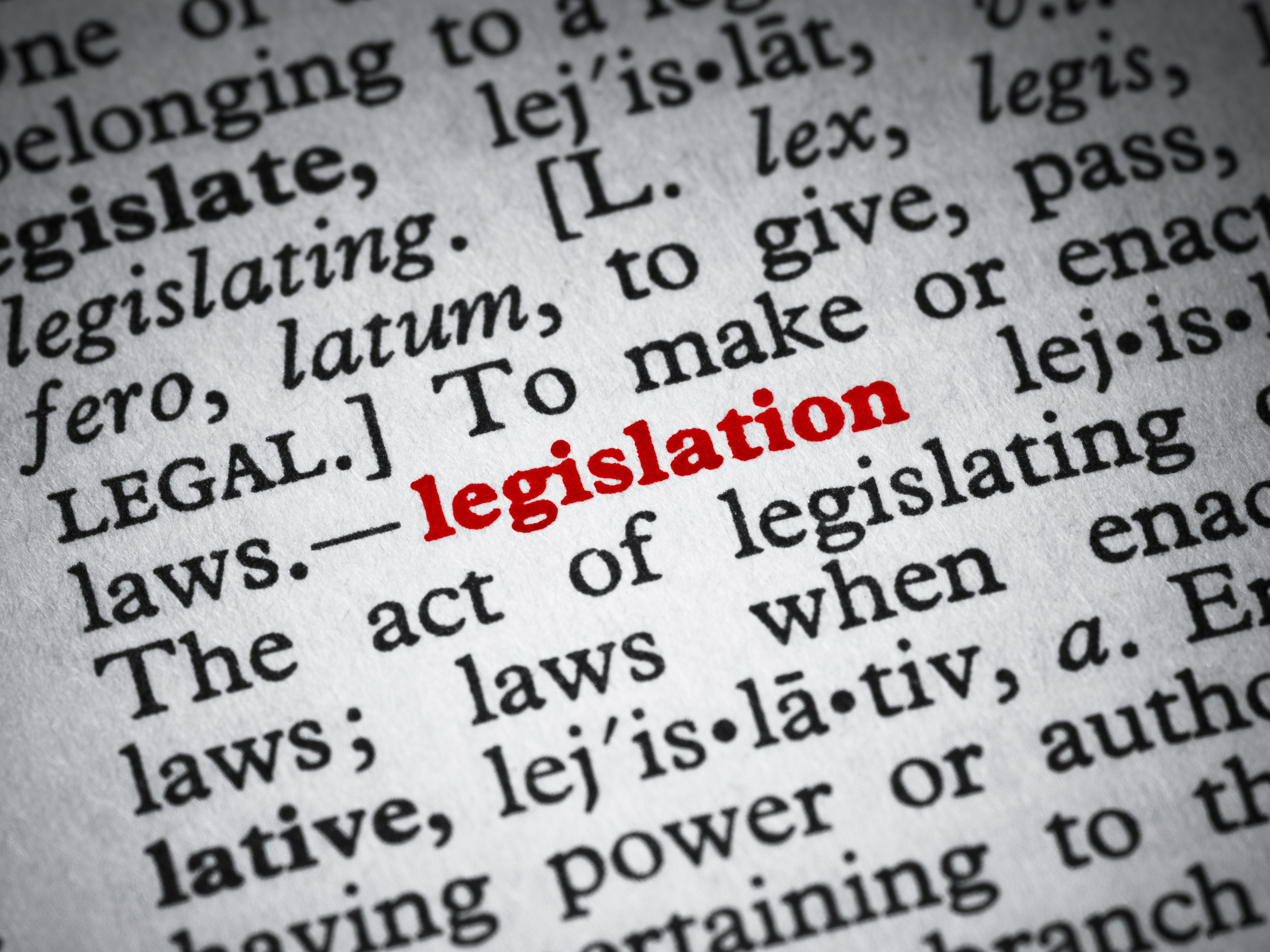 Dictionary definition of legislation
