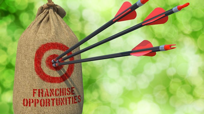Red arrows hitting the bulls-eye on a brown bag labelled franchise opportunities
